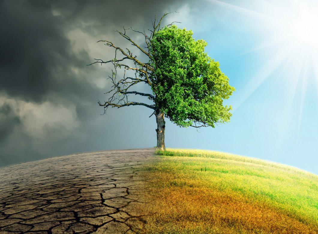 Advancements in Renewable Technology